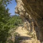 0239_2015-07-01_CheileNerei_fotoDanielSecarescu