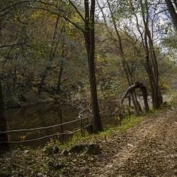 2015-11-11_MG_5158_CheileNerei spre LaculDracului_fotoDanielSecarescu