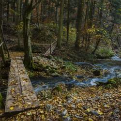 2015-11-12_MG_5197_OchiulBeiului_fotoDanielSecarescu