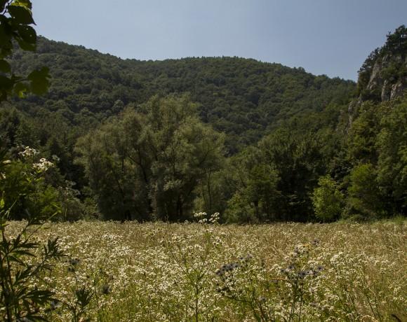 Sasca Montană – Potoc – Socolari – Lacul Ochiul Bei – Cascadele Beuşniţei – Sasca Montană